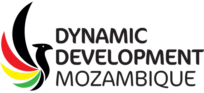 Dynamic Development Mozambique